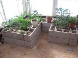 Concrete raised beds in a efficient greenhouse