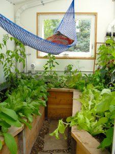 Backyard greenhouse with hammock