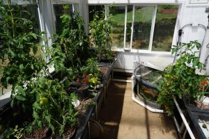 Aquaponic Greenhouse_Ceres Greenhouses