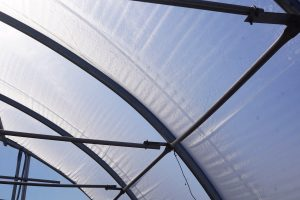 ETFE glazing on the greenhouse
