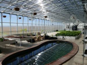ceres_hydroculture_greenhouse_hydro