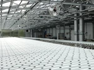 ceres_hydroculture_greenhouse_interior