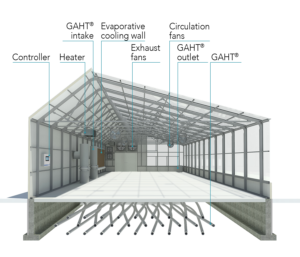 vented section of greenhouse