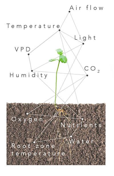 Controller - Around plants